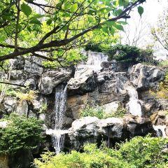 熱海梅園のユーザー投稿写真