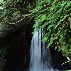 Huangsang National Nature Reserve User Photo