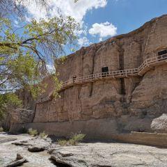 Yulin Grottoes User Photo