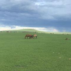 輝河國家級自然保護區用戶圖片