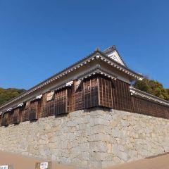 松山城のユーザー投稿写真