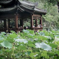 Lianhu Lake Park User Photo