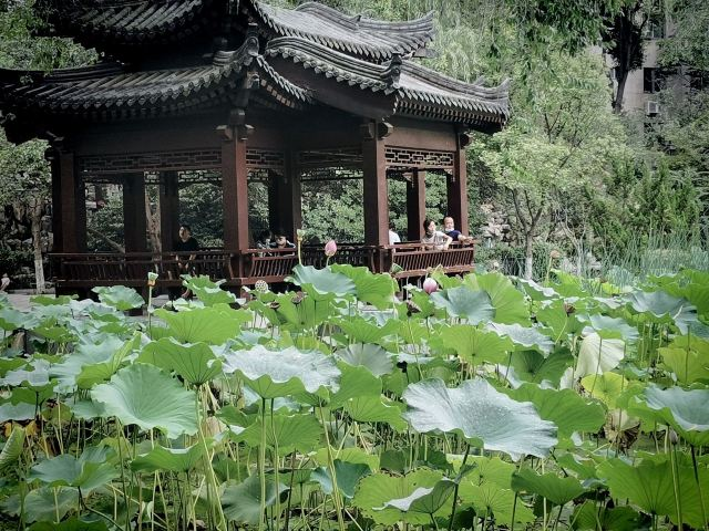 Lianhu Lake Park