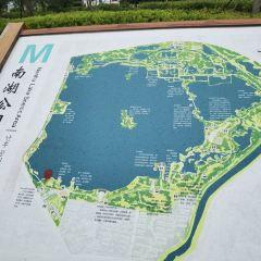 The Nanhu Wetland Park User Photo