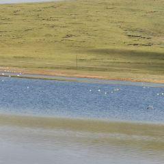 Yellow River Source Tourist Area User Photo