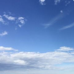 Mt Coot-Tha Reserve User Photo