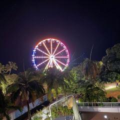 濱海大道用戶圖片