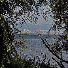 環洱海旅拍用戶圖片