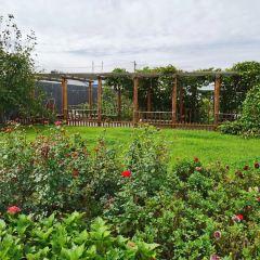 百花園用戶圖片