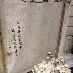 臨潼博物館用戶圖片