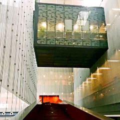 廣東省博物館張用戶圖片