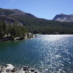 Tenaya Lake User Photo