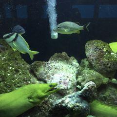 Miami Seaquarium User Photo