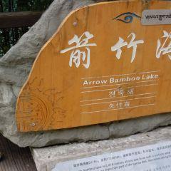 Arrow Bamboo Lake User Photo