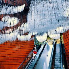 롯본기힐즈 여행 사진