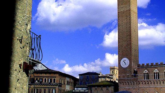 田野广场(Piazza del Campo)是意大利锡耶纳(