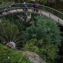 卡皮拉諾吊橋公園用戶圖片