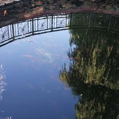 호반공원 여행 사진