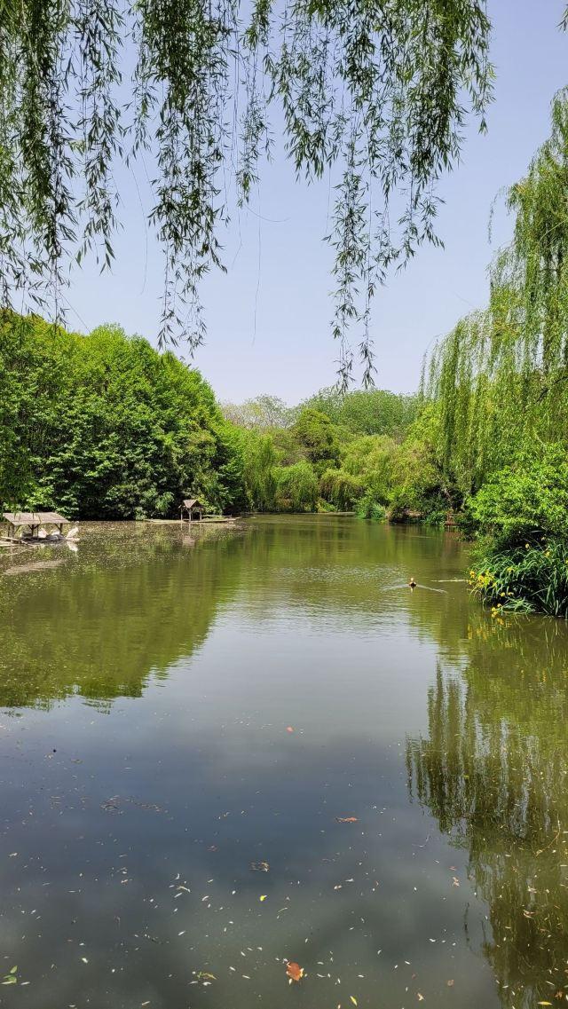 Zhuyuwan Scenic Spot