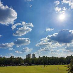 보라매공원 여행 사진