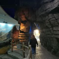 黃河宮用戶圖片