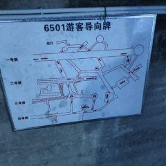 6501風景區用戶圖片