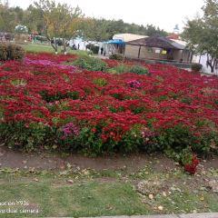 佳木斯市水源山公園用戶圖片