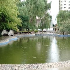 Jincheng Bonsai Garden User Photo