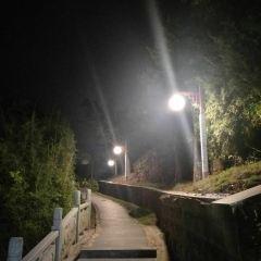 仙人山公園用戶圖片
