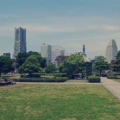 橫濱地標塔大廈用戶圖片