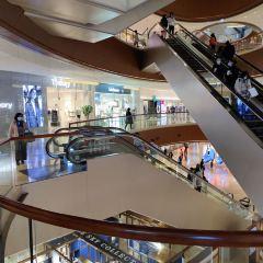 正佳廣場商貿旅遊區張用戶圖片