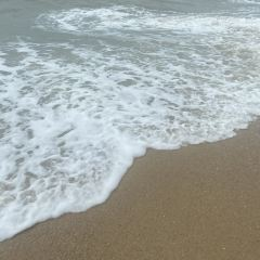 查汶海灘張用戶圖片