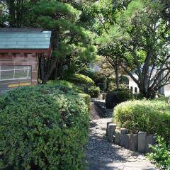 浦安町役場跡のユーザー投稿写真