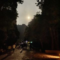 링펑 야경 여행 사진