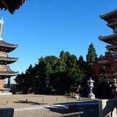 長慶寺のユーザー投稿写真