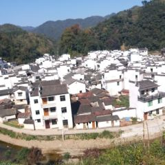 菊徑村用戶圖片