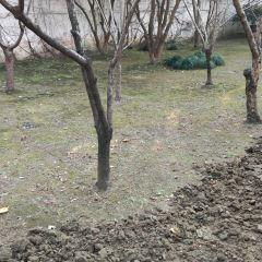 Lingering Garden User Photo
