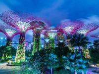 【新加坡解封】香港新加坡旅遊氣泡延期  入境檢測費用/網上申請程序/航班懶人包