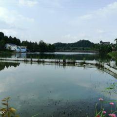Liangjiang Happiness Square User Photo
