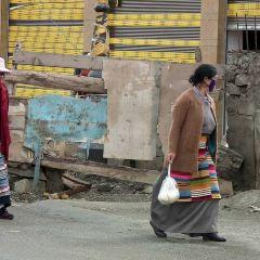Aden Village User Photo