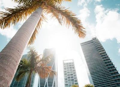 12 Great Things to Do in Miami