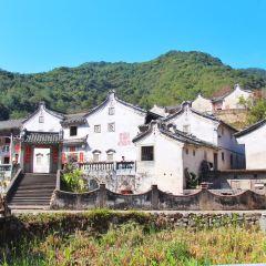 雁南飛茶田景區用戶圖片