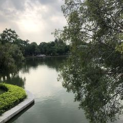 Shantou Zhongshan Park User Photo