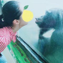 長春動植物公園用戶圖片