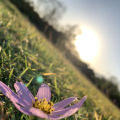 Conghua Hot Spring Scenic Area User Photo