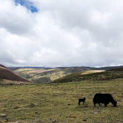 Galashen Mountain User Photo