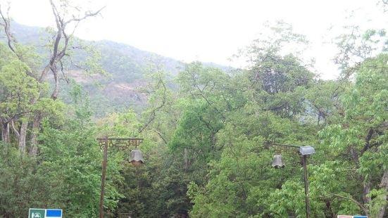鸡足山为云南佛教策源之圣地,犹山西之五台,四川之峨眉。山中寺