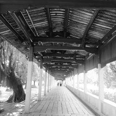 대개원사 여행 사진