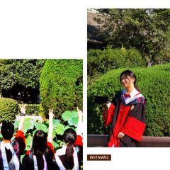 四川大学華西医学中心のユーザー投稿写真