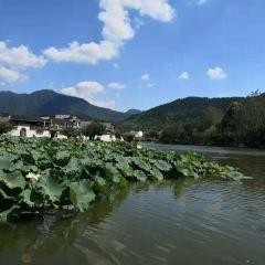Tangkouzhen User Photo